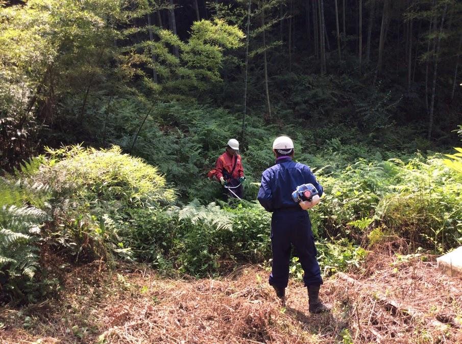 放置竹林を活用して地域活性させたい